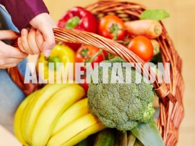 AnnuairePRO_0_EnCreation(Alimentation)[photo_profil]